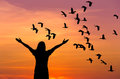 Silhouette Woman Standing Raised Up Hands During Flock Of Lesser Whistling Duck Flying On Sunset Royalty Free Stock Photography - 87145467