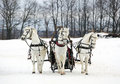 The Russian Troika - Three Of Horses In Sledge Royalty Free Stock Image - 87186516