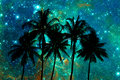 Palm Trees Silhouettes, Starry Night Royalty Free Stock Image - 87343186