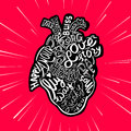 Hand Drawing Sketch Anatomical Heart. Lettering Doodle Vector Illustration. Many Inspirations In Heart Shape Stock Photography - 87386292