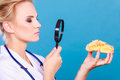 Doctor With Magnifying Glass Examining Sweet Food Royalty Free Stock Photos - 87555908