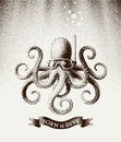 Octopus Wearing A Mask For Diving Under Water. Vector Illustration In Style Of Vintage Etchings Stock Images - 87585364