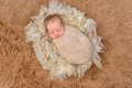 Sweet Sleeping Newborn On Fluffy Terry Blanket Stock Images - 87694934