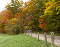 Road Through The Fall Trees Stock Image - 87753661
