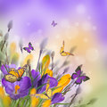 Spring Easter Card Royalty Free Stock Photography - 87777627