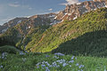 Colorado Summer In The San Juan Mountains Royalty Free Stock Photo - 87802005