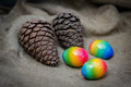 Easter Eggs And Pine Cones On The Background Of Sackcloth Royalty Free Stock Images - 87814819