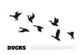 Black Silhouette Duck Flocks On A White Background Royalty Free Stock Photography - 87860057