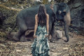 Brunette Woman Staring At The Wild Elephant Stock Photo - 87941490
