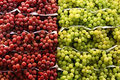 Fruit And Vegetables Royalty Free Stock Photo - 883145