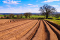 Ploughed Field Stock Photos - 8809093