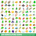 100 Agriculture Icons Set, Isometric 3d Style Royalty Free Stock Images - 88253849