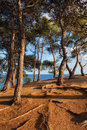Coastal Sunset On Costa Brava In Spain Royalty Free Stock Image - 88287196