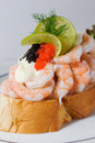 Seafood Sandwich Royalty Free Stock Image - 8840216