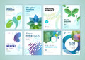 Beauty And Natural  Products Brochure Cover Design And Flyer Layout Templates Collection Stock Image - 88446541