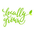 Locally Grown Hand Drawn Logo, Label, With Leaf And Sprout. Vector Illustration Eps 10 For Food And Drink, Restaurants Stock Photo - 88447740