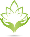 Two Hands, Leaves, Naturopath Logo Stock Photography - 88542272