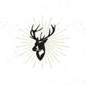 Hand Drawn Deer`s Head Label. Vintage Black Vector Silhouette Of Deer Head With Antlers, Sunbursts Isolated On White Stock Images - 88557374