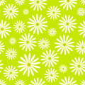 Hand Drawn Flower Seamless Pattern Easter Chamomile Wallpaper With Print Ornament Decoration And Floral Graphic Art Royalty Free Stock Photos - 88617118