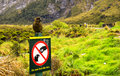 View Of Kea From The Road To Milford Sound Royalty Free Stock Photo - 88697285