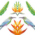 Mirror Birds Tropical Flowers And Leaves White Background Stock Photos - 88708573