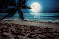 Beautiful Fantasy Tropical Beach With Star And Full Moon In Night Skies Royalty Free Stock Photography - 88747137