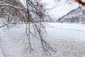 Frozen Lake Winter Time Stock Images - 88769494