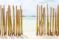 A Beached Bamboo Fence. Royalty Free Stock Image - 88826736