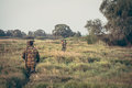 Hunters Crossing Through Tall Grass In Rural Field During Hunting Season Stock Image - 88849121