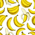 Banana Vector Seamless Pattern. Isolated Hand Drawn Bunch And Peel Banana Summer Fruit Artistic Style Stock Image - 88974401