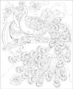 Black And White Page For Coloring. Fantasy Drawing Of Peacocks Couple. Worksheet For Children And Adults. Royalty Free Stock Photo - 88974865
