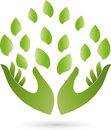 Two Hands And Leaves, Naturopath And Nature Logo Stock Photo - 89003190