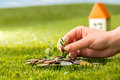 Plant Growing In Coins Glass Jar For Money On Green Grass Royalty Free Stock Photos - 89074918