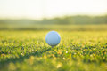 Close Up Of Golf Ball On Tee Stock Photo - 89087960