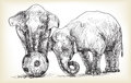 Elephant Playing Football, Sketch Free Hand Draw Illustration Royalty Free Stock Image - 89176866