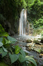 Waterfall St Lucia Botanical Gardens Stock Image - 89188131