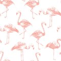 Seamless Pattern With Hand Drawn Flamingoes Royalty Free Stock Photography - 89199637