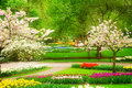 Spring Flowers In Holland Park Stock Photo - 89217310