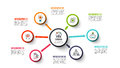 Vector Circle Infographic. Stock Images - 89252014