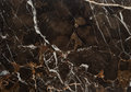 Brown Vein Marble Stone Royalty Free Stock Image - 89285516