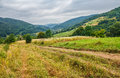 Countryside Summer Landscape With Field, Forest And Mountain Rid Royalty Free Stock Photos - 89330368