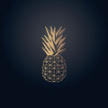 Gold Effect Pineapple Origami Vector Design Stock Photography - 89372722
