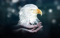 Person Holding Fractal Endangered Eagle Illustration 3D Renderin Royalty Free Stock Photography - 89515447