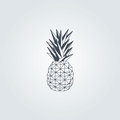 Pineapple. Color Black Vector Design With Grey Background Stock Photos - 89518223