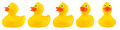 Yellow Classic Rubber Bath Duck Set Royalty Free Stock Images - 89534459