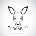 Vector Of A Kangaroo Head On White Background. Royalty Free Stock Photography - 89566697