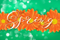 Spring Lettering Design Logo. Decorative Typography Element With Flowers On Green Background With Bokeh. Season Colors Royalty Free Stock Photography - 89578307