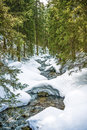 Stream In A Forest, Winter Time, Polish Mountains Tatry. Royalty Free Stock Photo - 89588145