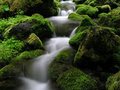 Mountain Stream Royalty Free Stock Images - 8965339