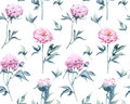 A Pattern From A Watercolored Botanical Illustration Of Pions Stock Photography - 89622972